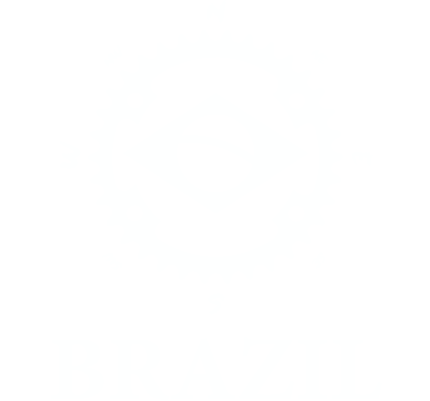 Brazil Sprint RACE BIKINGMAN | Race type