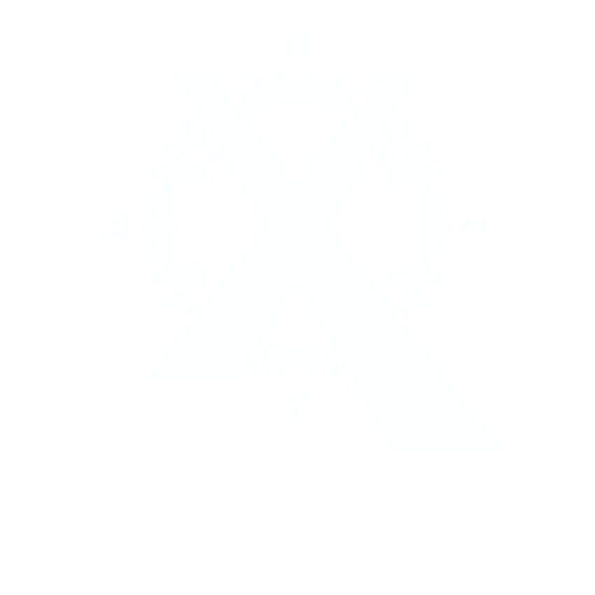 BikingMan X
