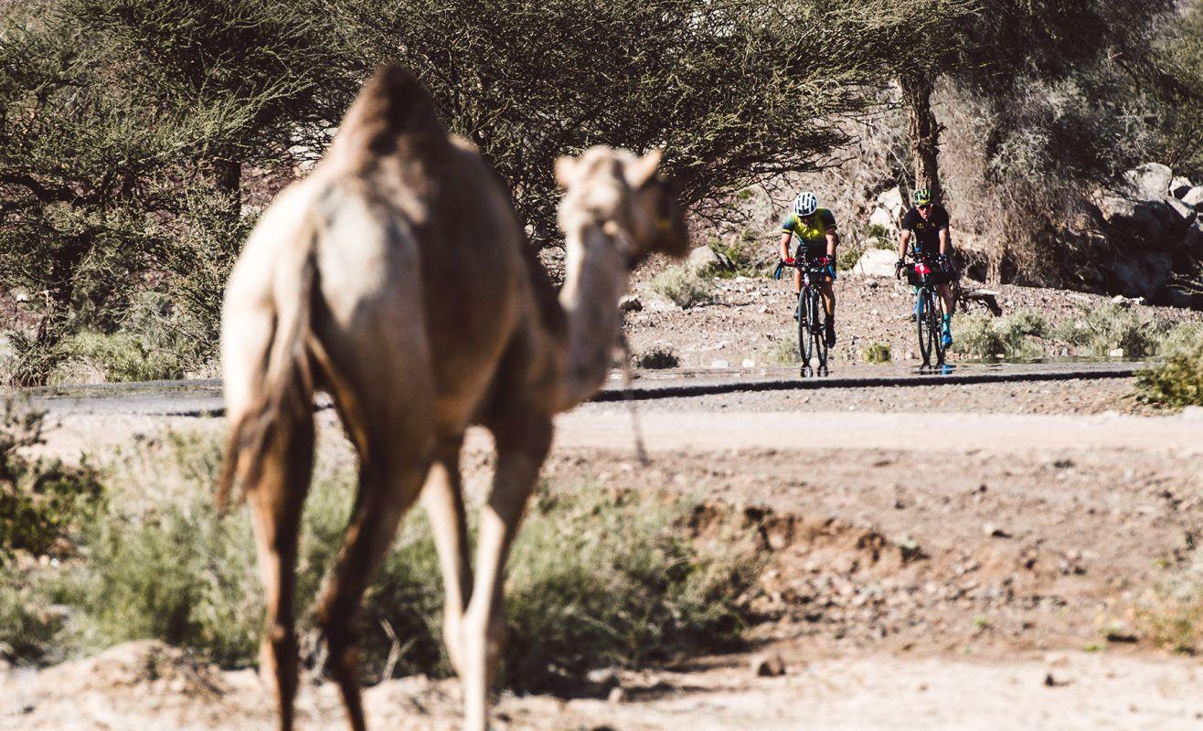 BikingMan Oman Mini-series on french national TV